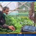 UB Kembangkan Sistem Pertanian Cerdas Lewat Smartphone